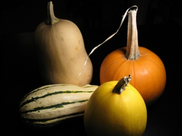 Courges_mini